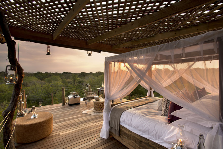 stay in a treehouse hotel